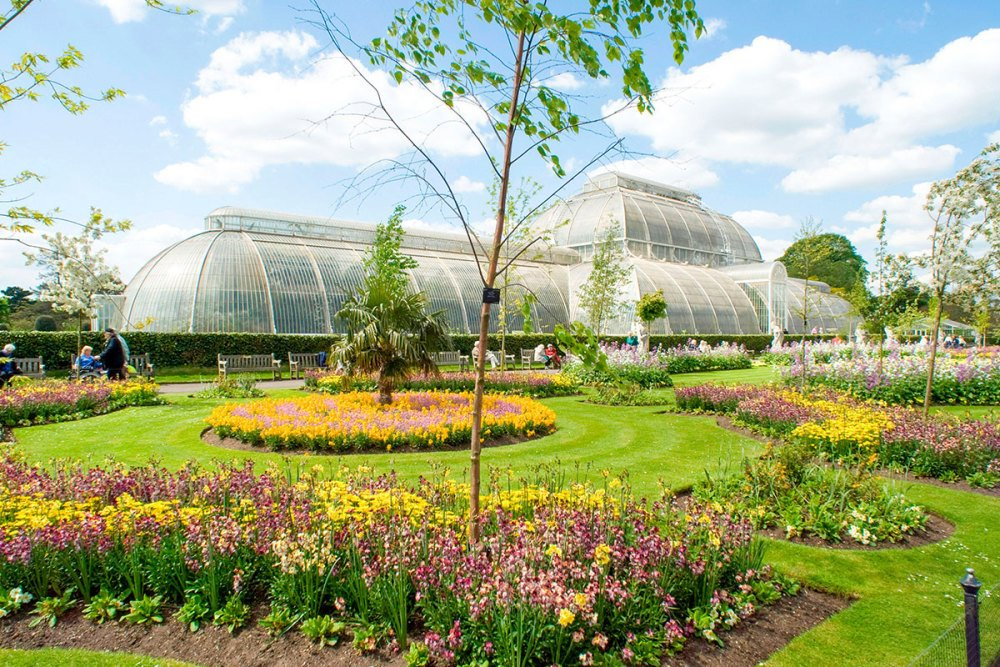 Treat your loved one to a visit to Kew Gardens with a Cream Tea