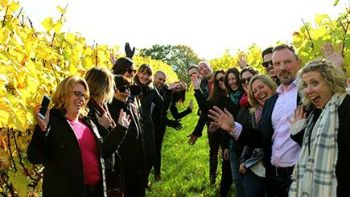 Sussex Vineyards and Cheese Coach Tour with Lunch and Wine Tasting from Bri