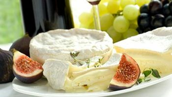Cheese Making and Wine Tasting for Two at Denbies Vineyard, Surrey