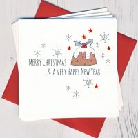 <!-- 006 -->Pack of Five Pudding Cards