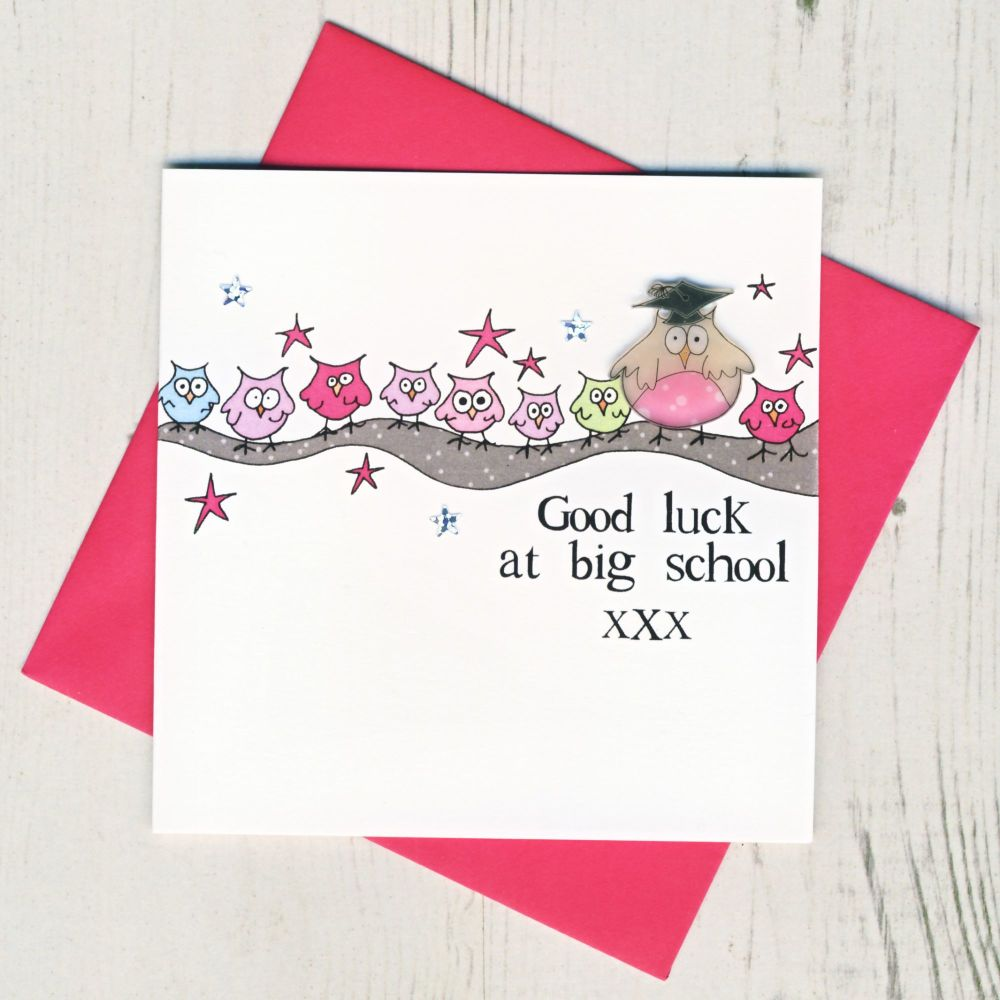 <!-- 004 -->Pink Owl Good Luck At Big School Card