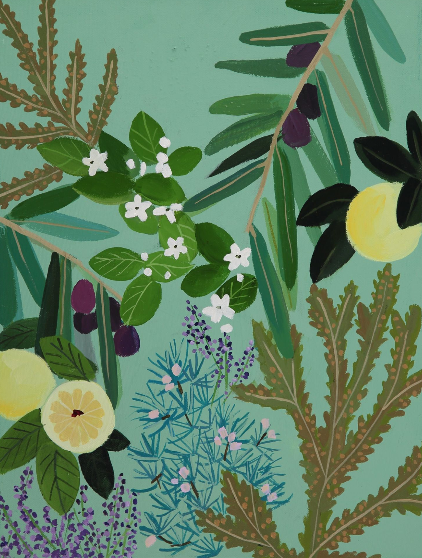 An illustrates selection of leaves, fruit and flowers on an aquamarine background