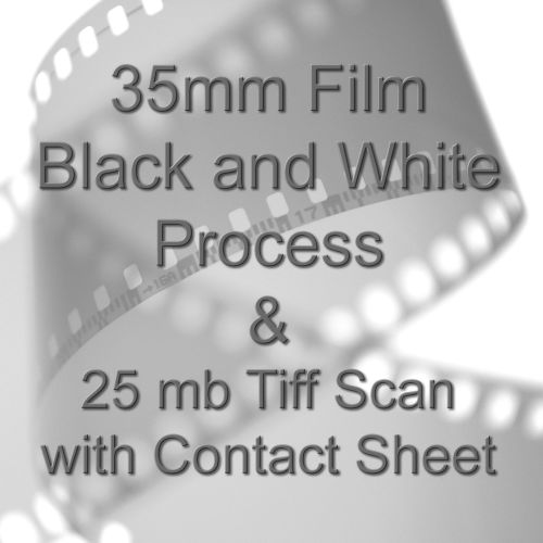 35mm BLACK & WHITE FILM PROCESS AND 25.9mb TIFF FILM SCAN INC 10X8 CONTACT