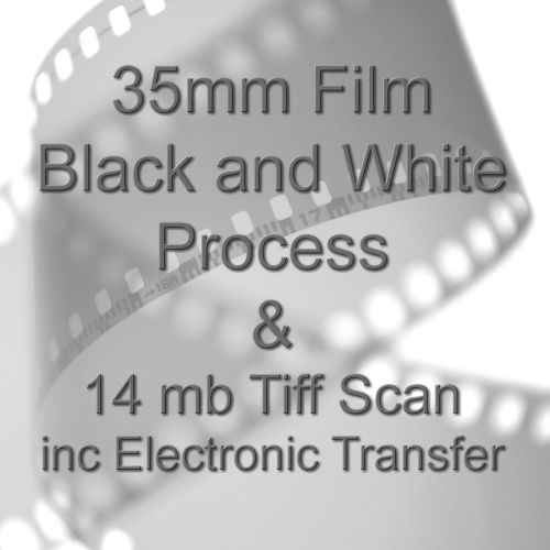 35mm BLACK & WHITE FILM PROCESS AND 14.0mb TIFF FILM SCAN WITH ELECTRONIC S