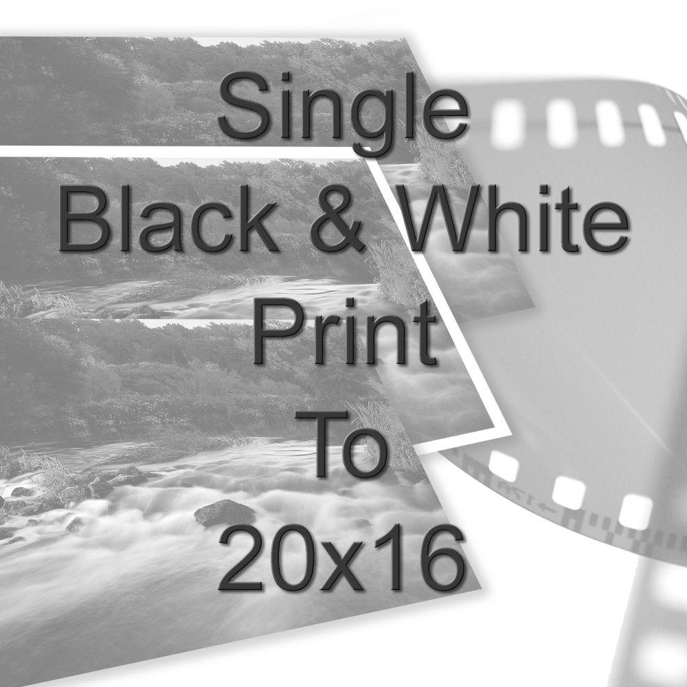 "SINGLE 16X20"" BLACK AND WHITE PRINT"