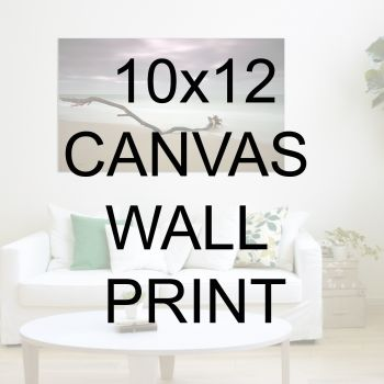 "10x12"" Canvas Wrapped Prints"