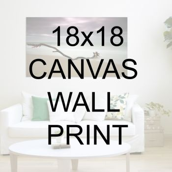 "18x18"" Canvas Wrapped Prints"