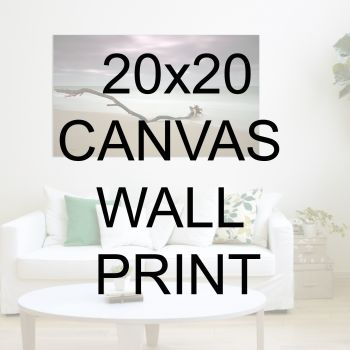 "20x20"" Canvas Wrapped Prints"