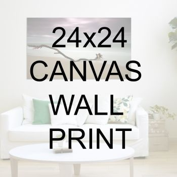 "24x24"" Canvas Wrapped Prints"