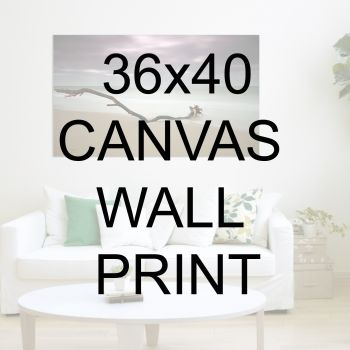 "36x40"" Canvas Wrapped Prints"