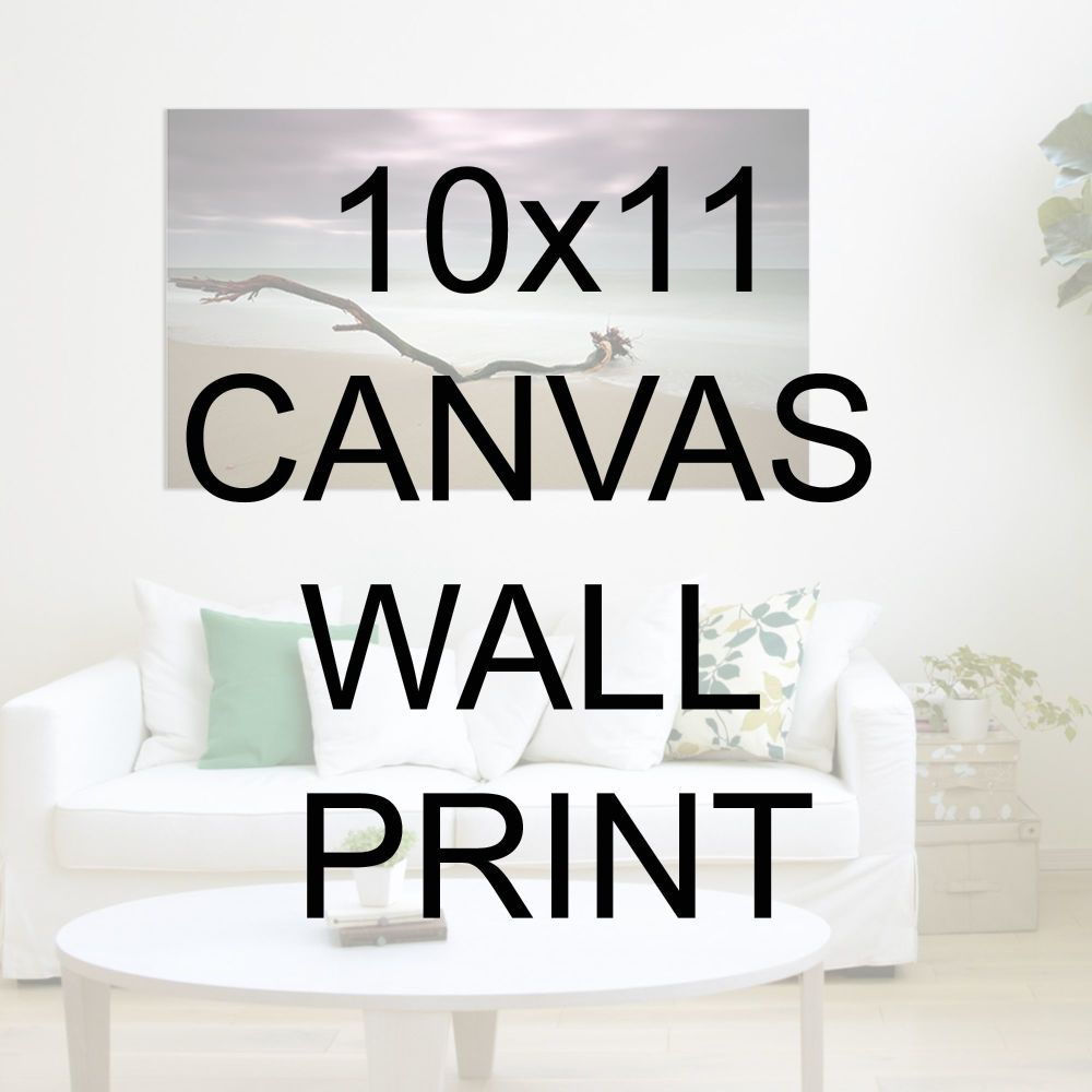 "10x11"" Canvas Wrapped Prints"