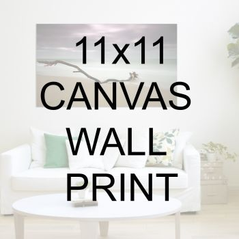 "11x11"" Canvas Wrapped Prints"