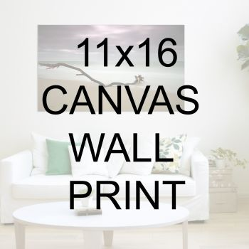 "11x16"" Canvas Wrapped Prints"