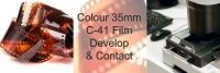 C-41 COLOUR 35mm FILM DEVELOP AND 10X8 CONTACT / INDEX SHEET