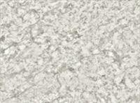 Bushboard Omega G113 Granite Bianco - 3mtr Upstand
