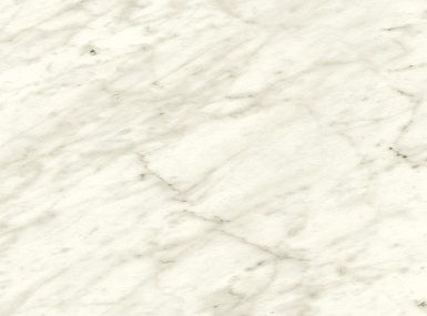 FT6696 Carrara Bianco - Absolute Matte
