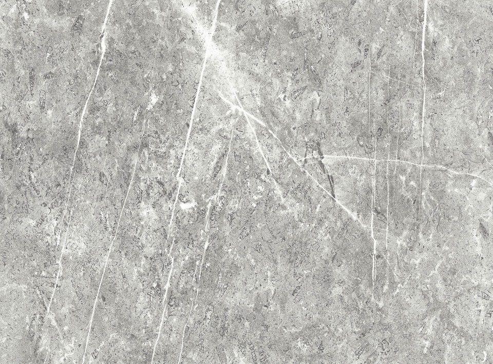 White Lightning Fossil - Roccia Texture