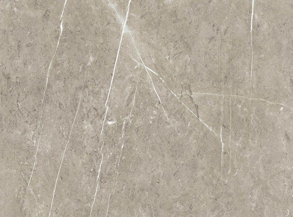 Sand Lightning Fossil - Roccia Texture