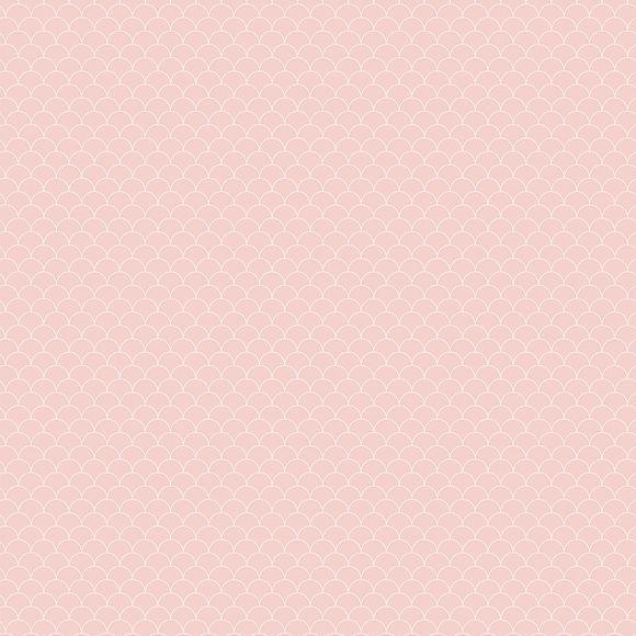 SCA18 Scallop Blush