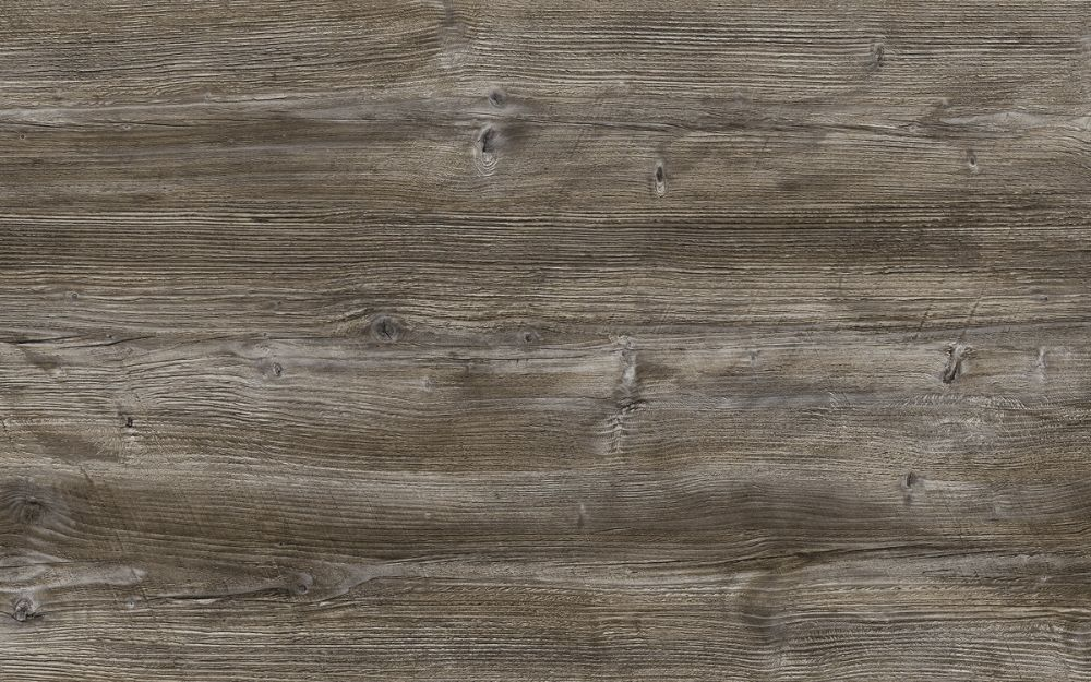 Dark Driftwood - Nature Texture