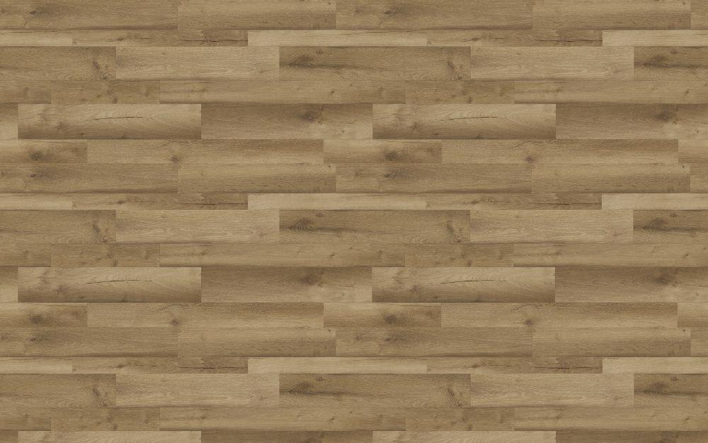 Block Broad Oak - Nature Texture