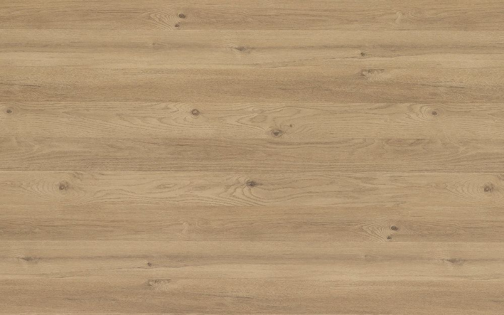 Cedarwood - Fibril Texture