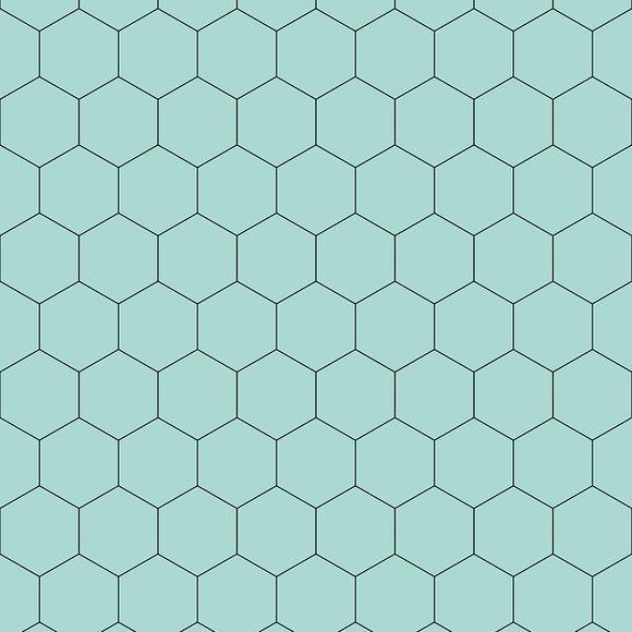 SCA20 Hexagon
