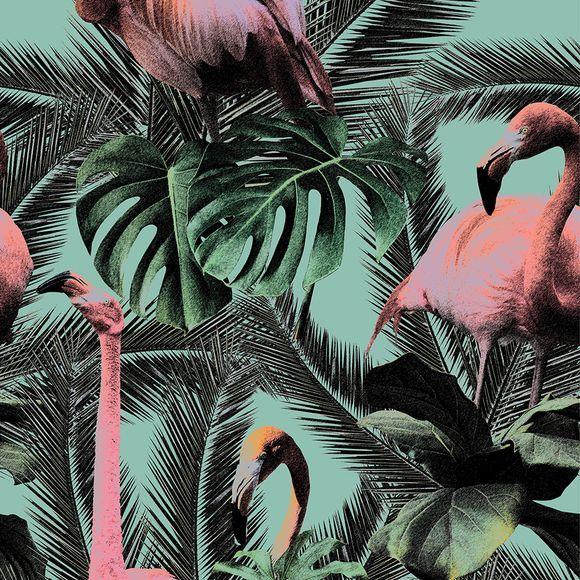 SCA24 Flamingo