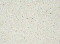 Bushboard Nuance F070 Vanilla Quartz - 3mtr Bathroom Worktop