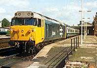Cat 5 Class 50