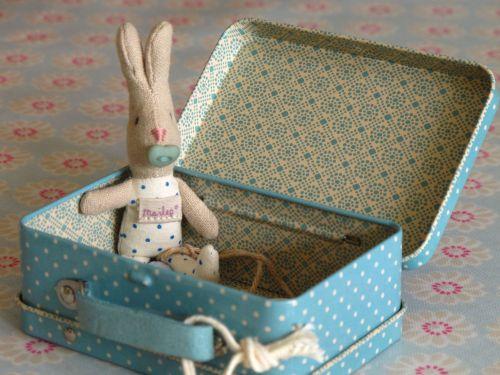 Teeny Tiny Boy Bunny in Case