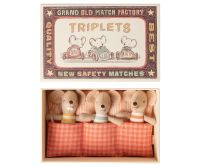 *BACK IN STOCK!* Baby Mice, Triplets in a Box