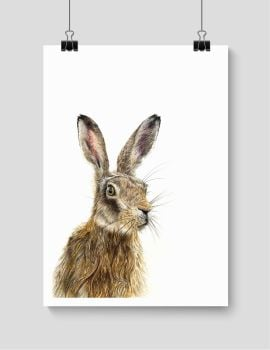 Brown Hare - Print