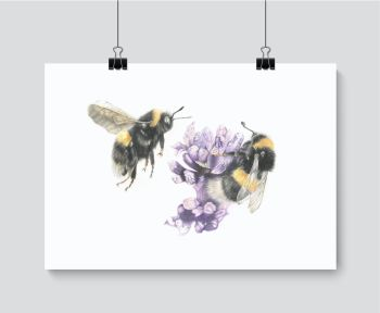 Bumbling Around - Print