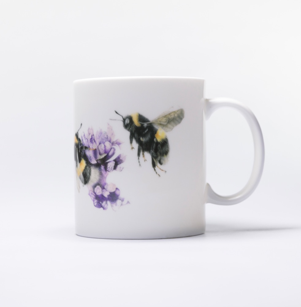 Fine and Bone China Mugs