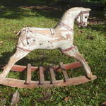 Ditsy Dot Roebuck rocker colt from Australia