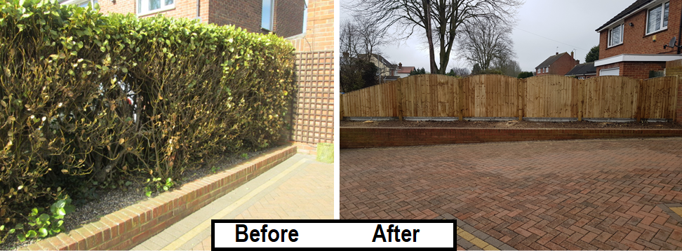 Before and after - closeboard fence- old hedge removed