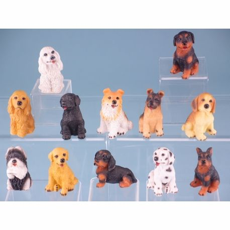 10247 Sitting dogs - 12 assorted