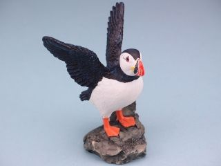 11671 Puffin with open wings