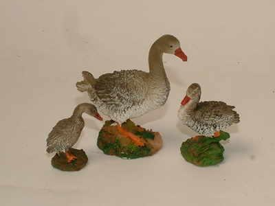 Grey goose family