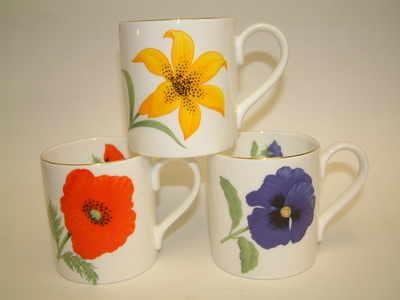 Balmoral beaker-bold floral - 3 assorted