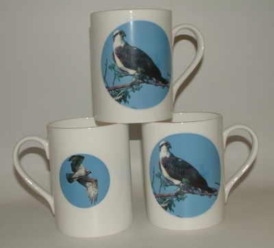 Lyric beaker - Osprey