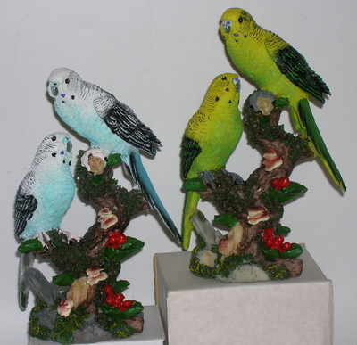AM7162 Budgies on branch
