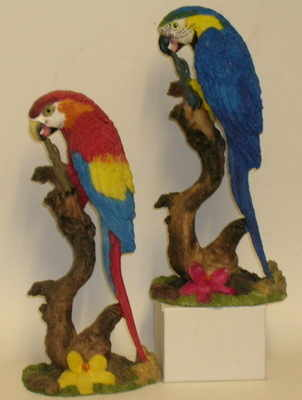 SA641 Macaw 8