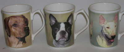 FC004 A/ Ridgeback  B/ Boston Terrier  C/ English Bull Terrier
