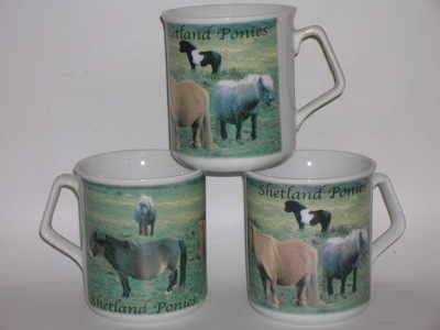 FC008 Shetland ponies
