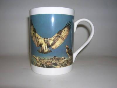 FC001/A Lyric beaker - Osprey
