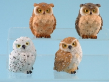 10953 Ruffled feathered owls