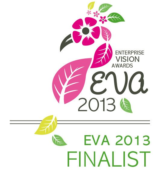 eva awards 2013 | Kian Designs Handmade Jewellery