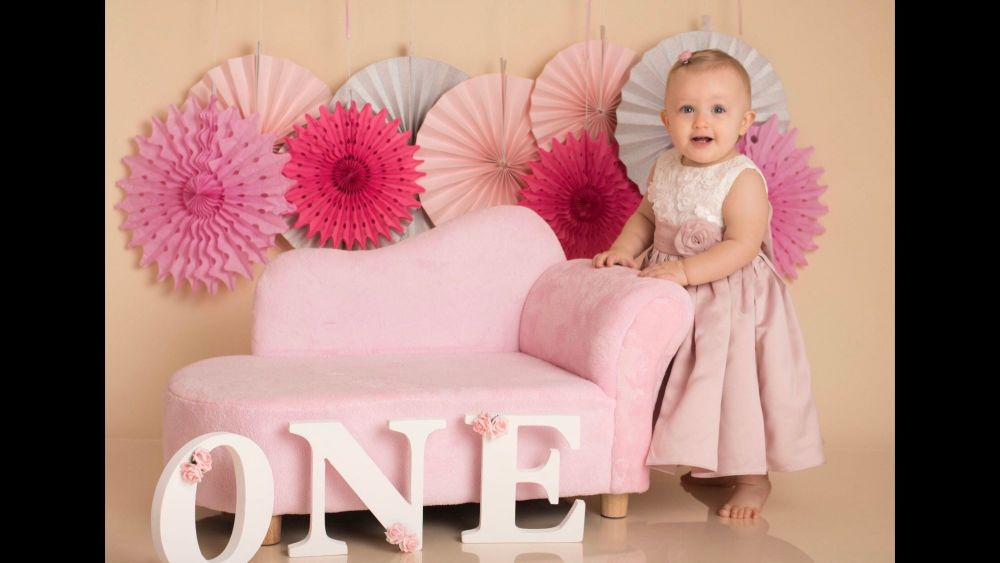 ONE 1st Birthday Photo prop